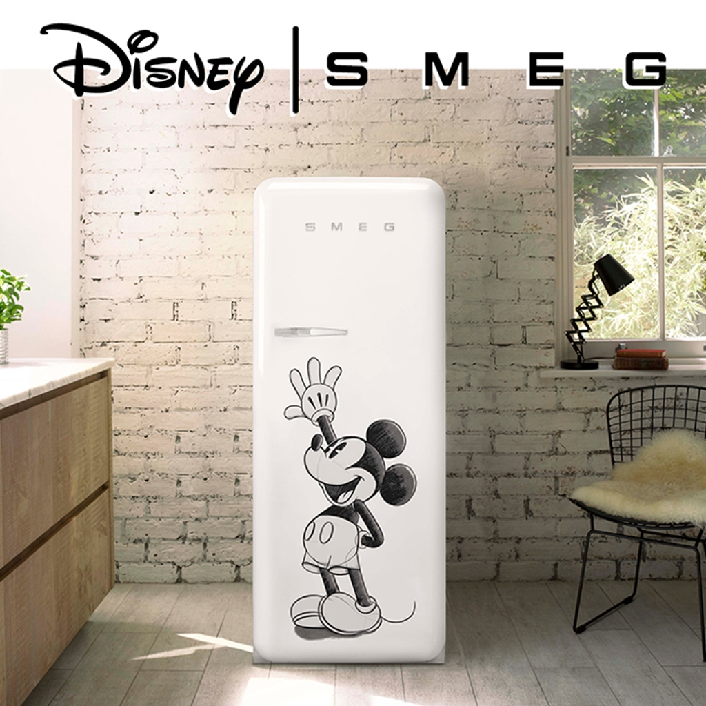 Mickey fridge